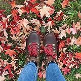 KODIAK Boot Surrey ll Hiking, Curry, 8