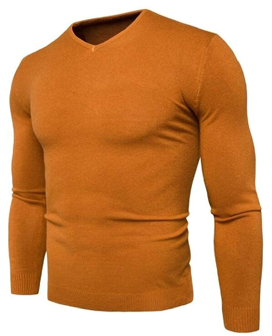 Alion Mens Fashion Autumn Casual Slim Fit Knit V-Neck Pullover Sweater