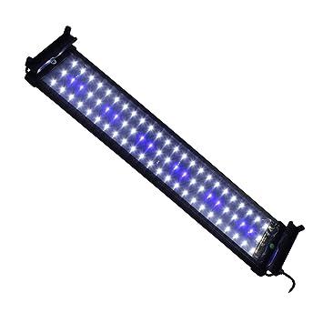 Amazon.com : Mingdak LED Aquarium Light Fixtures for Fish Tanks, led ...