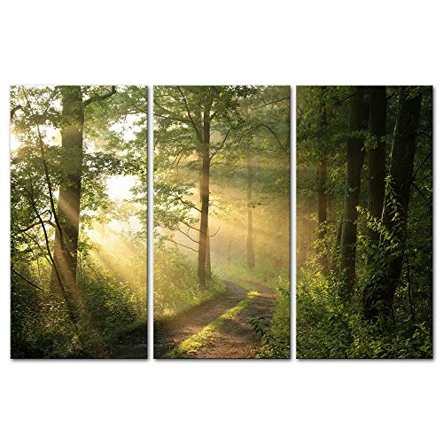 3 Pieces Modern Canvas Painting Wall Art The Picture for Home Decoration Dirt Road Deciduous Forest Green Trees Foggy Morning Spring Landscape Forest Print On Canvas Giclee Artwork for Wall ()