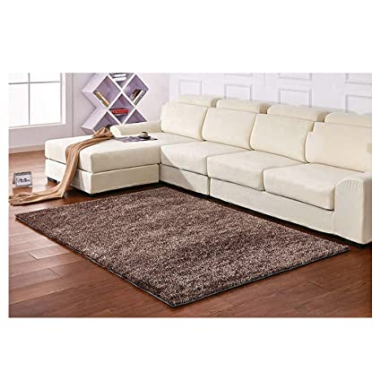 Collections Of Arpets For Ligjht Brown Couches
