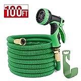 100ft water hose - HOUSE DAY 100 feet Green Heavy Duty Expanding Garden Water Hose,3/4