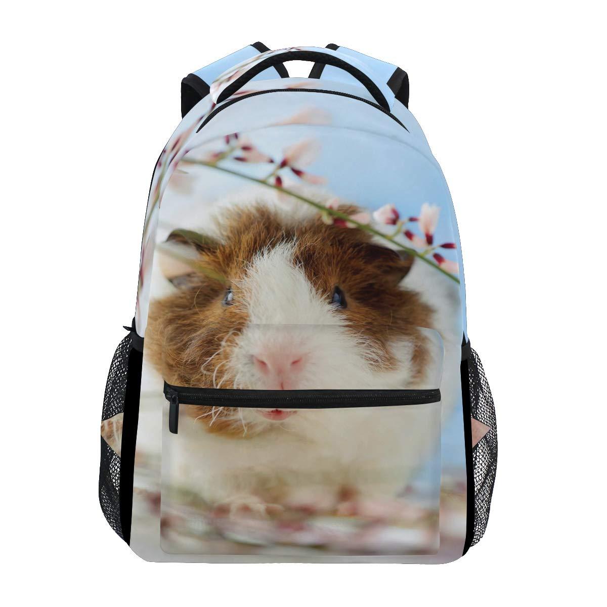 d55b69afa22f Guinea Pig Backpack | Sante Blog