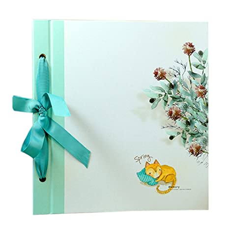 Amazoncom Lanna Shop Creative Interstitial Photo Album Baby