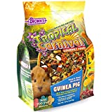 Tropical Carnival F.M. Brown's Gourmet Guinea Pig Food with Alfalfa and Timothy Hay Pellets, 10-lb Bag - Vitamin-Nutrient Fortified Daily Diet