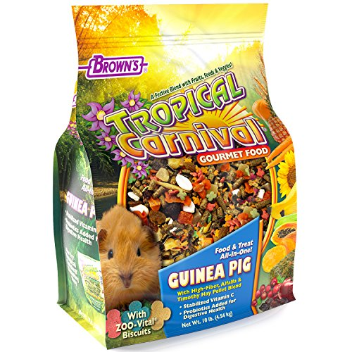 F.M. Brown'S Tropical Carnival Gourmet Guinea Pig Food With Alfalfa And Timothy Hay Pellets, 10-Lb Bag - Vitamin-Nutrient Fortified Daily Diet