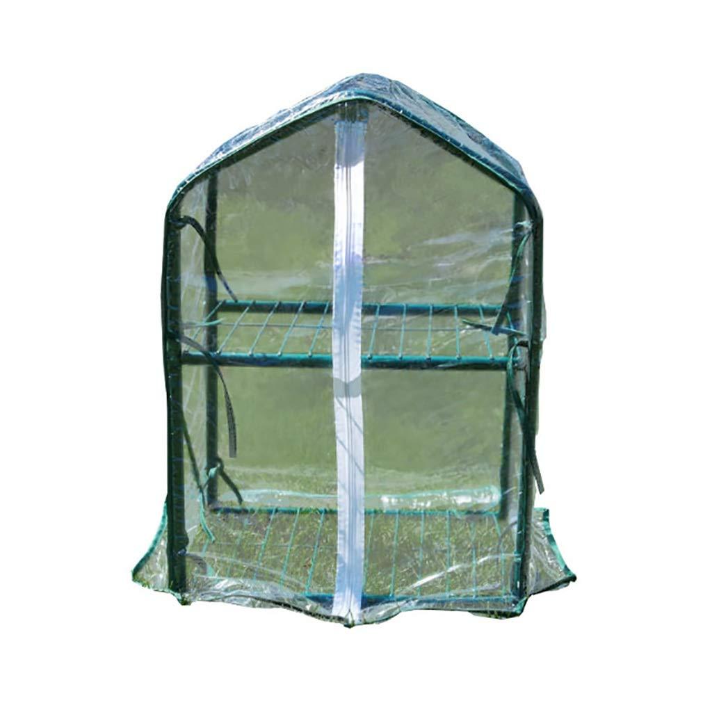 ガーデン温室:屋内と屋外の植物に囲まれたハーブフラワーガーデンバルコニー B07K5PC38B