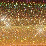 """Hair Flairs Pro Hair Tinsel - 100 Strands, 36"""", Sparkle Champagne"""