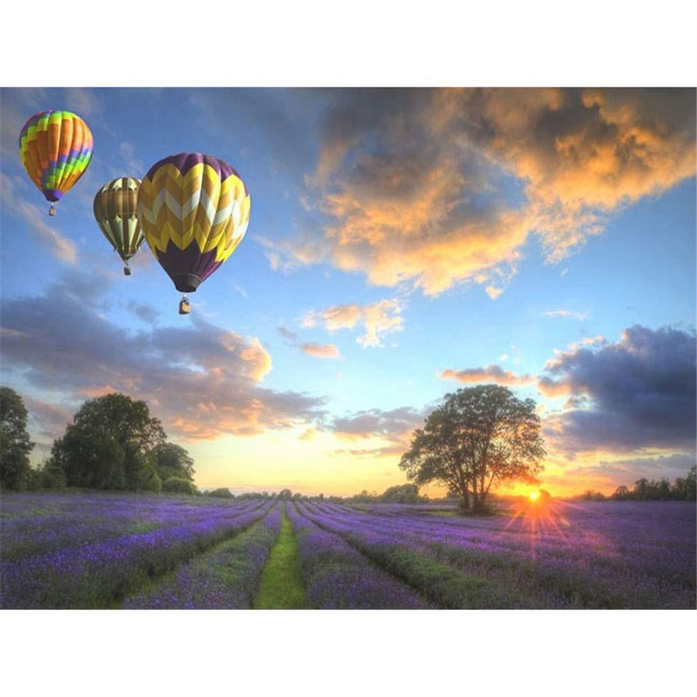Malen Nach Zahlen Erwachsene Heißluftballon Heller Himmel Lavendel Abstrakte Grafik Wand Dekorgeschenke Für Erwachsenen 16X20 Inch Holzrahmen B07PQ8Z6X7 | Erschwinglich