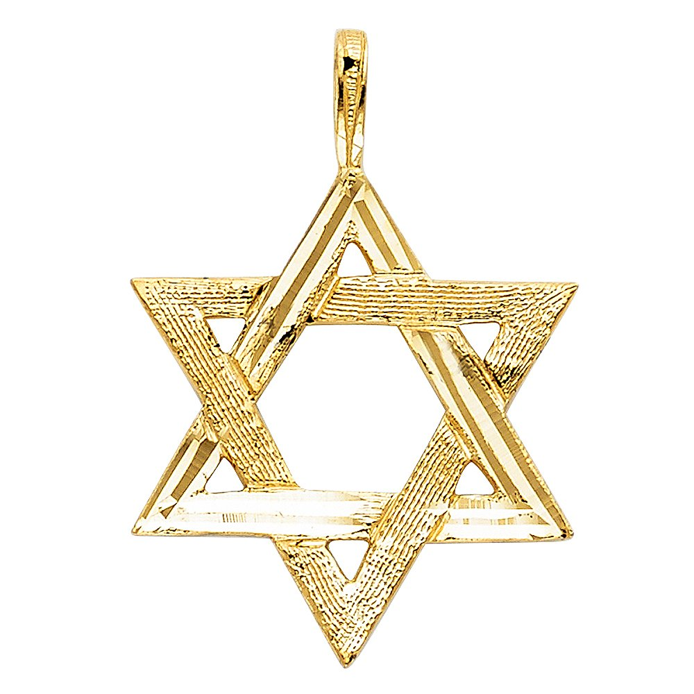 25mm x 22mm with 18 Rolo Chain Million Charms 14k Yellow Gold Star of David Charm Pendant