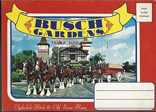 busch-gardens-tampa-florida-12-vues-in-color
