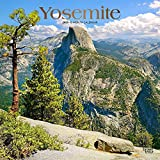 Yosemite 2020 12 x 12 Inch Monthly Square Wall Calendar with Foil Stamped Cover, USA United States of America National Park West Scenic Nature