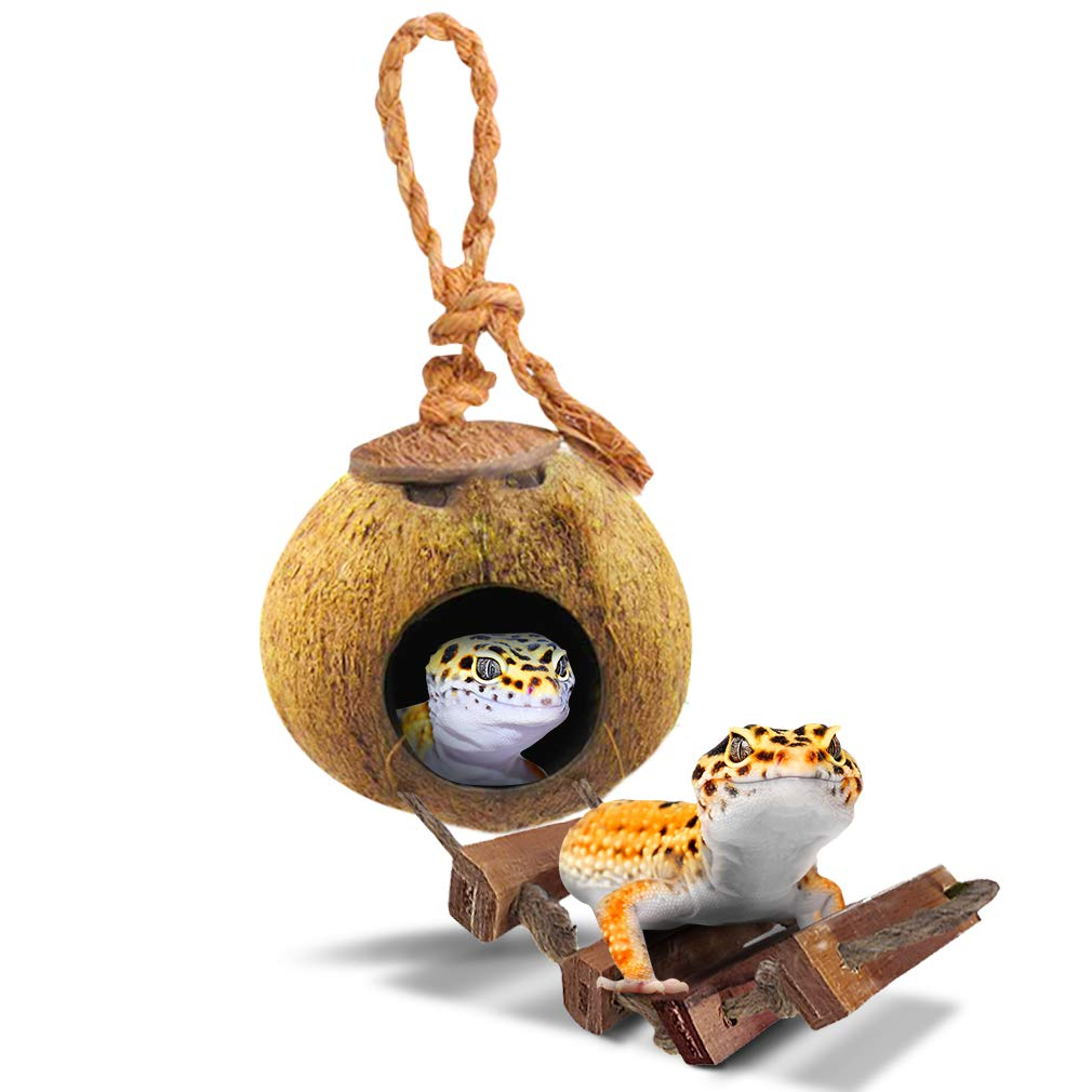 SunGrow Raw Coconut Husk Hut with Ladder for Leopard Gecko, Nesting Home Hide, Coco Texture Provide Food for Pets, Durable Cave Habitat with Hanging Loop, 5.1 Inches with 2.4 Inches Opening Diameter by SunGrow