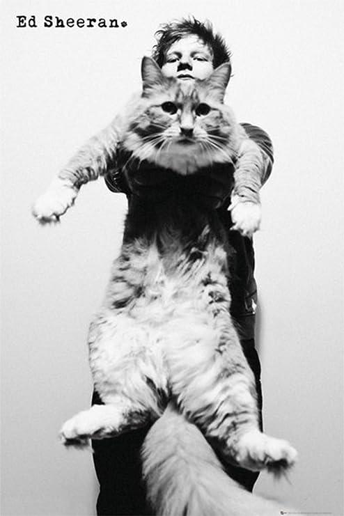 Ed Sheeran Black /& White 24 x 36