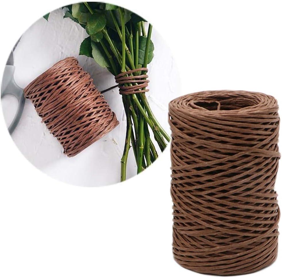 Fil Fer naturel,PanDaDa Fleurs en bouquet de rotin Cravate Attach/ée Bouquet Tissage /à la main fixe Fil de bricolage Roll Papier