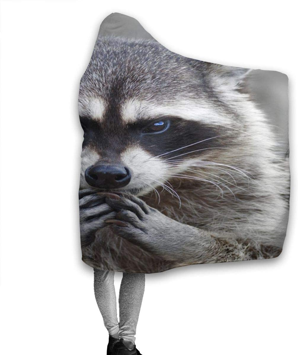 Home//Travel//Camping Applicable Moslion Soft Cozy Hooded Blanket Lovely Raccoon Fuzzy Warm Blanket Hoodies for Adult//Youth 50x40
