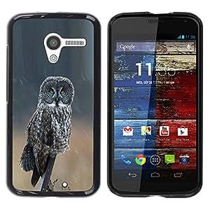 YOYOYO Smartphone Protección Defender Duro Negro Funda Imagen Diseño Carcasa Tapa Case Skin Cover Para Motorola Moto X 1 1st GEN I XT1058 XT1053 XT1052 XT1056 XT1060 XT1055 - lechuza alas ornitología grises naturaleza del verano