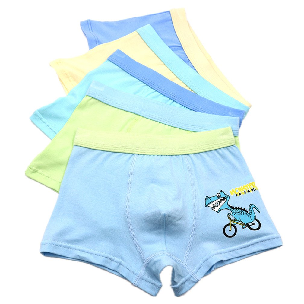 Little Boys' Sport Boxer Brief Toddler Underwear 5 Pack Czofnjesi
