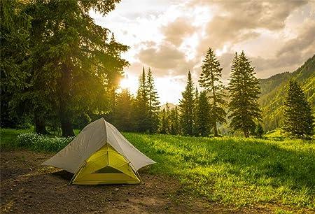 Campeggio paesaggio sfondo | Vettore Gratis