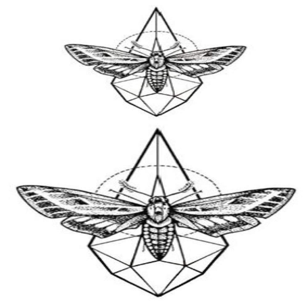 5piezas Mariposa Tatuaje Pegatina Impermeable Temporal Falso ...