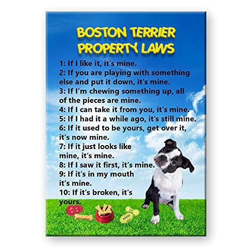 Boston Terrier Property Laws Fridge Magnet No 3 Funny