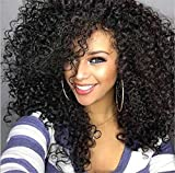 Best African American Wigs - Cool2day Afro Kinky Wig Cheap Synthetic Long Kinky Review