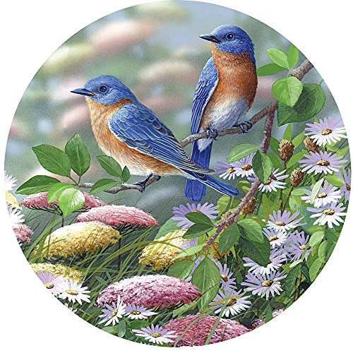 Bits and Pieces - 1000 Piece Round Jigsaw Puzzle for Adults - Meadow Blue - 1000 pc Birds Jigsaw by Artist Bradley Jackson