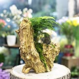 NCYP Artificial Driftwood Planter Resin Flower Pot Large Sculpture Succulent Air Plants Multilayer Irregular Hallow Out 2 Pots Rustic 2 Layers Trunk Stump for Decoration No Plants