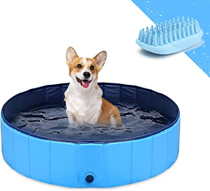 Gostock Dog Pool For Large Dogs Folding Kiddie Pool Portable Pet Pools For Dogs Collapsible Swimming Pool For Kids 32 X 8 Inch Pet Supplies
