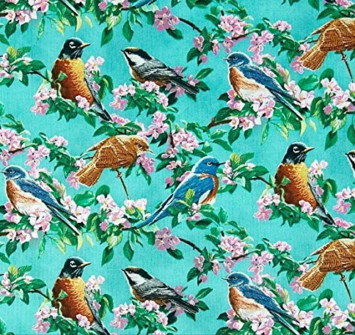 - Birds Fabric Bright Birds Cherry Pink Flowers Cotton Fabric By Fat Quarter New BTFQ