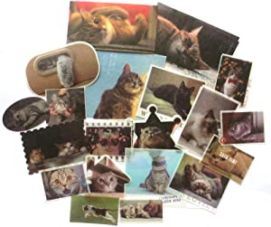 DzdzCrafts 40pcs Lazy Cat Washi Paper Stickers Pack for Scrapbooking Diary Planner Album journals Phone Case Card Making Laptop