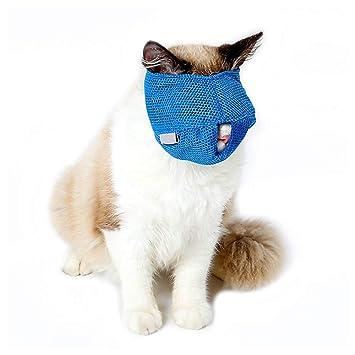 ASOCEA - Máscara de Malla Transpirable para Gato con Adhesivo mágico Ajustable para el Cuidado y Evitar arañazos, Antimanchas y masticación: Amazon.es: ...