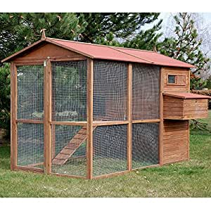 Gallinero 10 gallinas Large Square - Animaloo: Amazon.es
