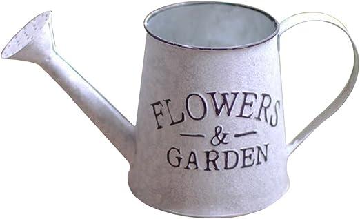 HOUYAZHAN Regadera jardín de Metal jardín Herramientas de riego -2 galones (Color : Metallic): Amazon.es: Jardín