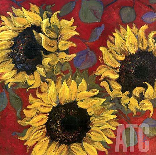 (ArtToCanvas 35W x 35H inches : Sunflower I by Shari White - Canvas )