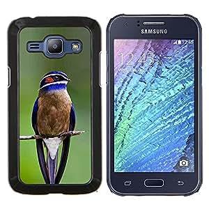 EJOOY---Cubierta de la caja de protección para la piel dura ** Samsung Galaxy J1 J100 ** --azul pájaro cantor pájaro rama verde de plumas