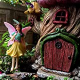 PRETMANNS Fairy Garden House Accessories Kit