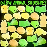 Hicdaw Glow in the Dark Squishy, 25 Pcs Animals Mochi Squishy Glow in the Dark Squishy Squishies Mini Squishy Toys Stress Relief Kawaii Squishies Soft Mochi Squishy Toys Stress Squishies Random