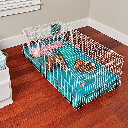Guinea Habitat Guinea Pig Cage Amp Accessories By Midwest