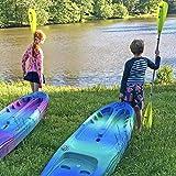 Perception Kayaks Hi Five   Sit on Top Kids Kayak