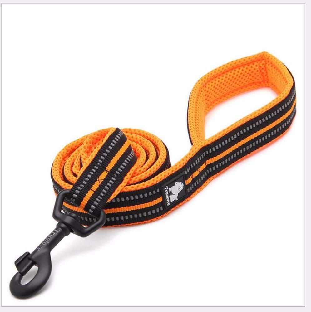 A Hhxx9 Pet Dog Rope Traction Hyena AntiLost Lost AntiRiot Nylon DoubleLayer Tensile Soft Mesh Rope 2.0X110Cm,B