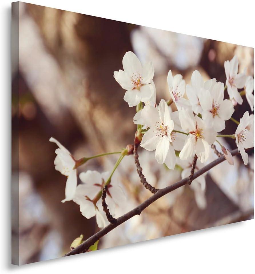Feeby. Cuadro en Lienzo - 1 Parte - 40x60 cm, Imagen impresión Pintura decoración Cuadros de una Pieza, Flores, Naturaleza, MARRÓN, Blanco