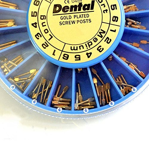 Fencia 120 Pcs Dental Gold Plated Conical Screw Posts Assorted Conical Screw Posts Kits Refill