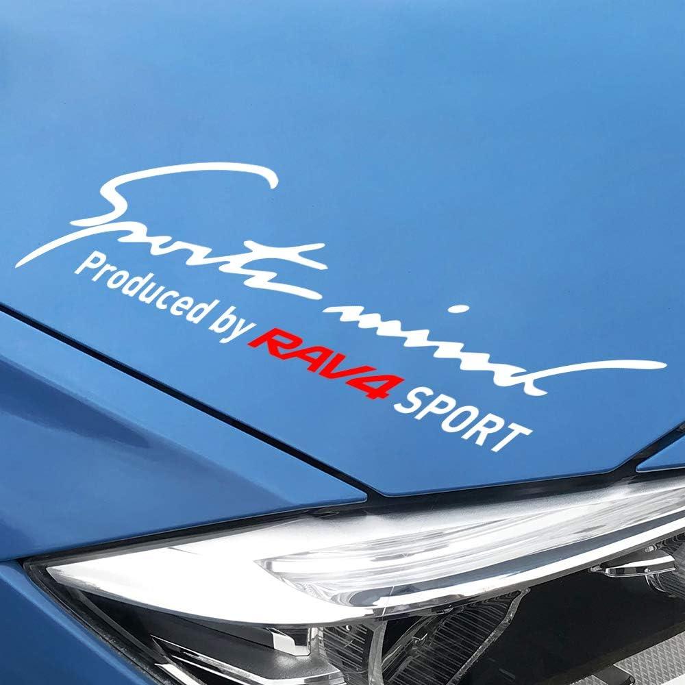 FSXTLLL Auto Seitenstreifen Seitenaufkleber Aufkleber F/ür Toyota RAV4