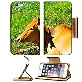 MSD Premium Apple iPhone 6 Plus iPhone 6S Plus Flip Pu Leather Wallet Case Cow eating grass in a field IMAGE 20327491