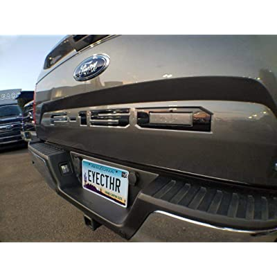EyeCatcher Tailgate Insert Letters fits 2020-2020 Ford F150 (Gloss Black): Automotive