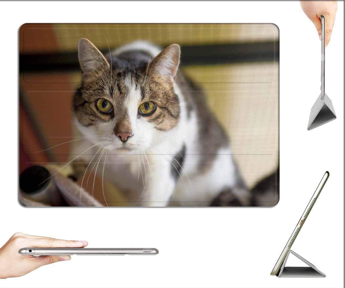 Cat Tiger Cat Domestic Cat Curious Cat Face 3rd Gen, 10.5-inch 2019 Case for iPad Air 3
