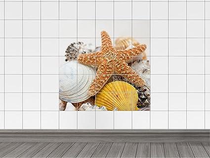 Piastrelle in stelle marine e conchiglie per il vostro bagno