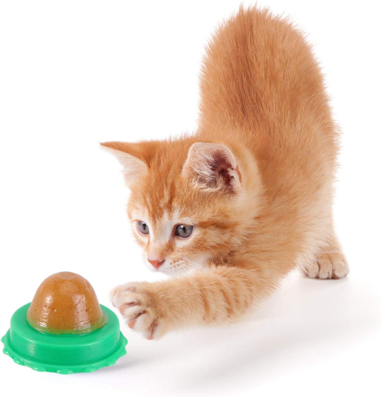 Cat Snack Licking Sugar Ball Catnip Wall Ball Cat Treats Healthy Candy Ball Catnip Candy Kitten Licking Sweet Ball Treats Lickable Candy N//N Cat Snacks Candy
