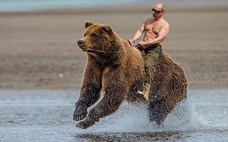 Putin endorses….Joe Biden (breitbart.com)